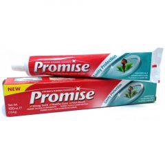 Dabur Promise Tooth Paste 100ml.